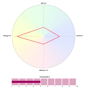 Facet5 profile